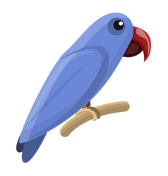 solomon parrot icon cartoon style vector image