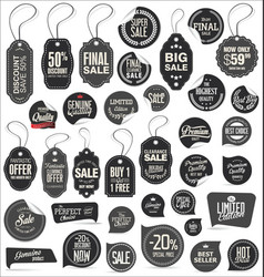 stickers and tags retro vintage collection vector image