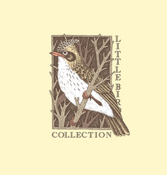 vintage bird label vector image