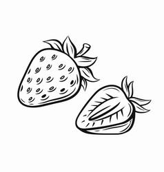 strawberry black vector image vector image