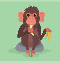 cute monkey character animal wild zoo ape vector image