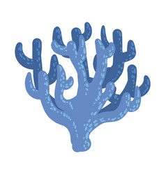 Blue antler soft coral tropical reef marine vector