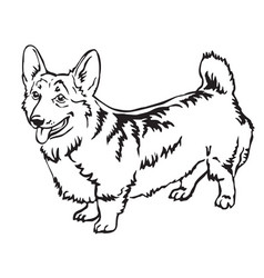decorative standing portrait of welsh corgi vector image