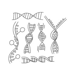 Informational set dna helix sketch hand drawn vector
