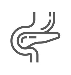 pancreatic diabetes line icon vector image