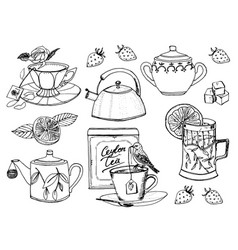 Tea time set of kettle natural organic product vector