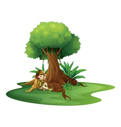 A young girl relaxing under a big tree vector image