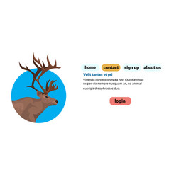 deer portrait cartoon animal reindeer flat blue vector image