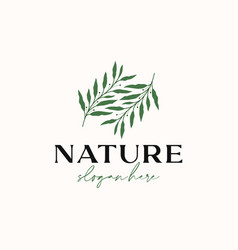 Olive leaf branch logo template isolated in white vector