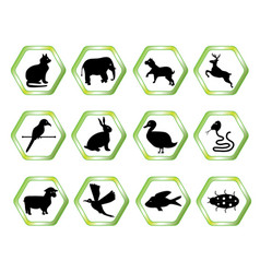 animal symbols vector image