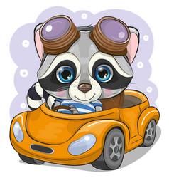 Cartoon raccoon boy in glasses goes on a orange vector