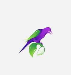 Colorful logo design animal bird vector
