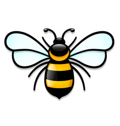 isolated honeybee cartoon design vector image
