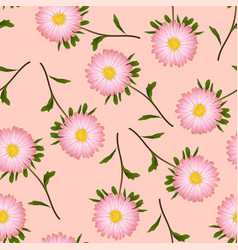 Pink aster daisy on pink background vector