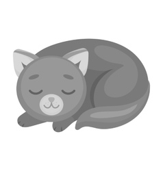 Sleeping cat icon in monochrome style isolated on vector image
