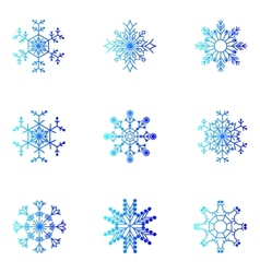 Snowflakes Christmas and new year design element vector