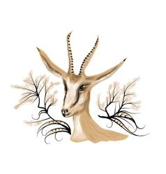 Springbok vector image
