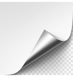 Curled Silver Metalic Corner of White Paper vector image vector image