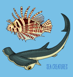 sea creature red lionfish and great hammerhead vector image vector image