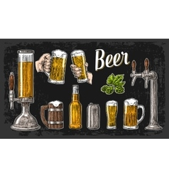 Two hands holding beer glasses mug and tap class vector image