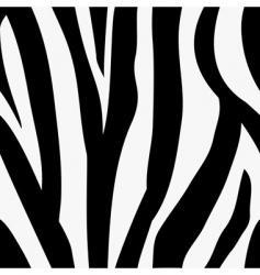 zebra animal print pattern vector image vector image