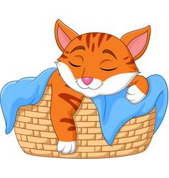 Cartoon cat sleeping in the basket vector