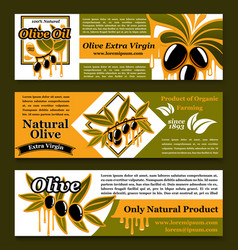 Olive oil extra virgin product banners set vector