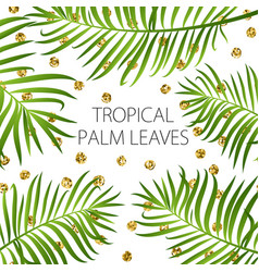 Palm leaves background vector