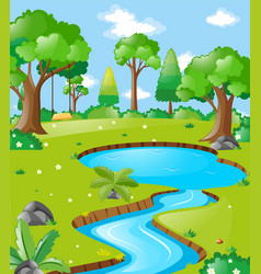 Scene with river in the forest vector