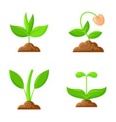 sprout flat icons plant orgainc sapling set vector image