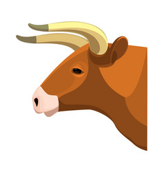 bull head realistic icon profile view on brown vector image vector image