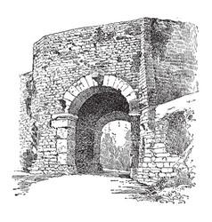 An ertuscan arch italy vintage engraving vector