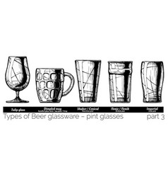 Beer glassware vector