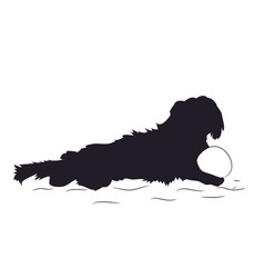 dog lies silhouette dachshund vector image