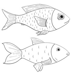 Fish outline drawing vector