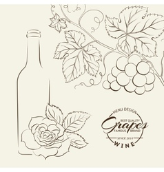 Hand drawn wine label vector