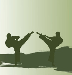 Men are engaged karate vector image