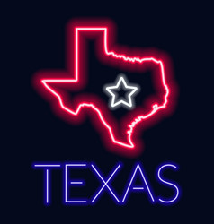 neon of the state of texas vector image