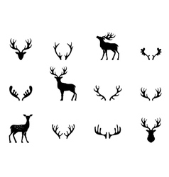 Set of antlers silhouette vector image