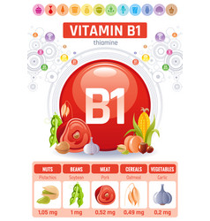 Thiamine vitamin b1 food icons healthy eating vector