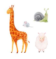 cute watercolor animal set vector image vector image