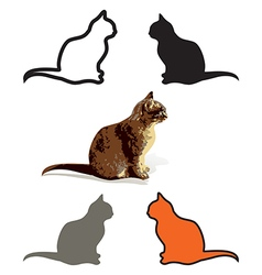 Set of Cats Are Sitting isolated vector image