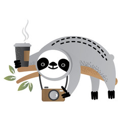 Cute sloth bear animal with a camera vector