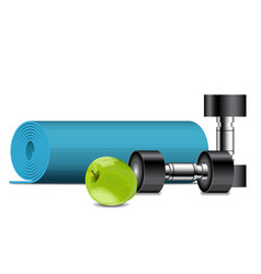 fitness equipment apple dumbbells and fitness vector image