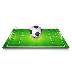 football field soccer field set with vector image