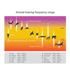 Hearing range describes the range of frequencies vector