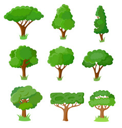 set of decorative stylized tree vector image