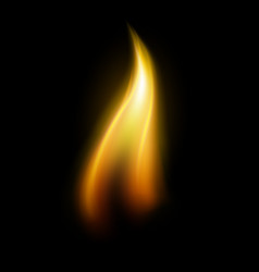 single candle flame element vector image