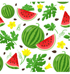 watermelon seamless pattern in flat design vector image