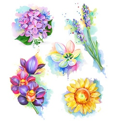 Beautiful flowers watercolor painting mesh icon vector image vector image
